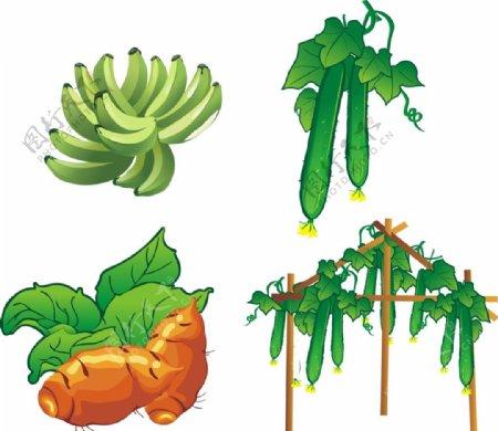 矢量黄瓜香蕉图片