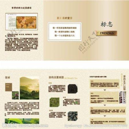 茶叶介绍三折页图片