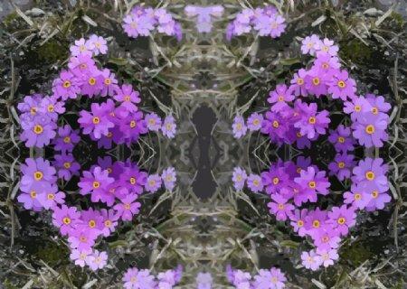 矢量花朵背景