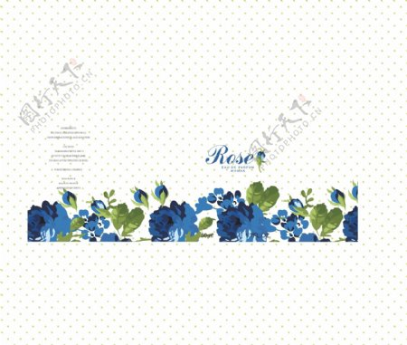 蓝玫瑰rose香水