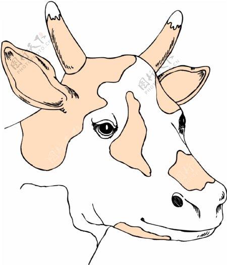 家禽家畜动物矢量素材EPS格式0143