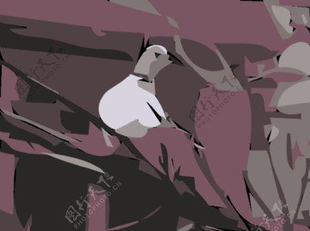 可爱的鸽子鸽子