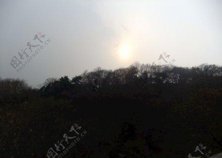 北京八达岭长城草木