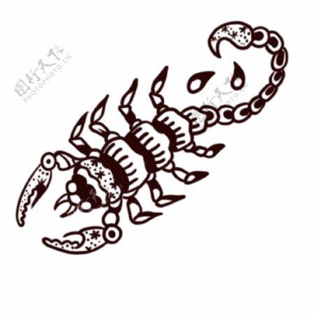 欧美纹身手稿手绘蝎子图腾