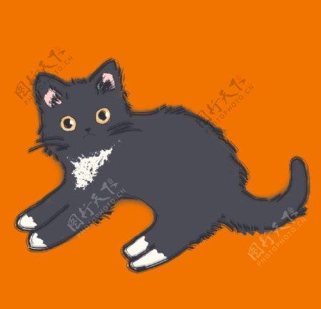 蓝猫猫咪手绘图片