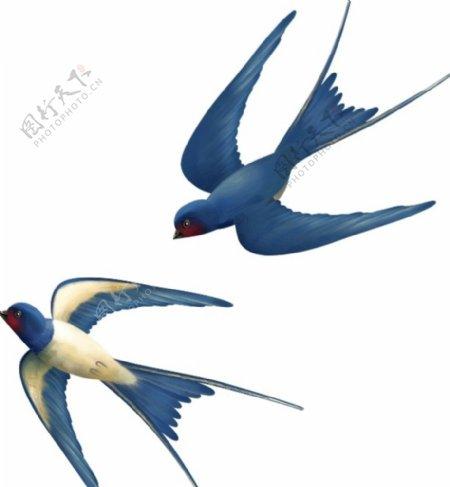 中式素材燕子图片