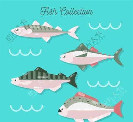 质感鱼类侧面图片