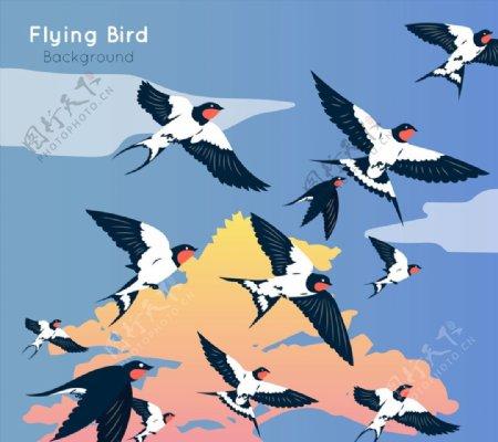 飞翔的燕子群图片