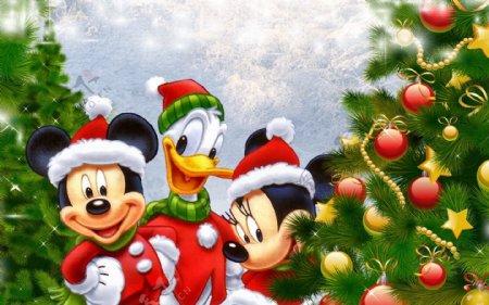 米奇卡通动漫圣诞唐老鸭图片