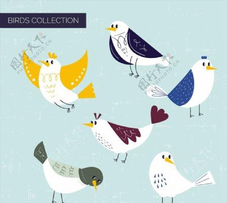 手绘鸟类设计图片