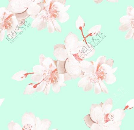 淡雅手绘花卉图片