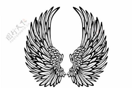 黑色翅膀图片