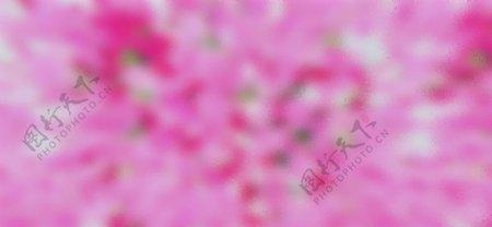 抽象暴开粉红背景图片