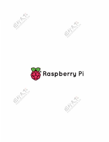 树莓派logo图片