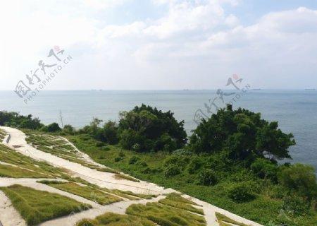海绿荫图片