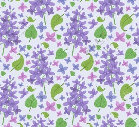 丁香花和叶子背景图片