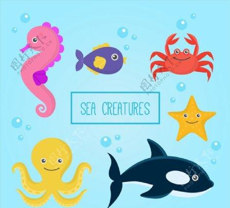 海洋动物矢量图片