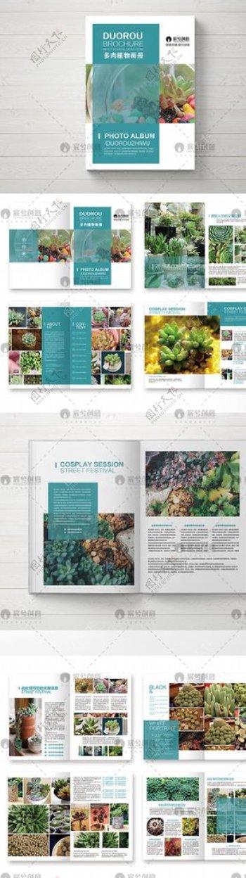 创意多肉植物画册图片
