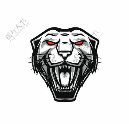 老虎头图片