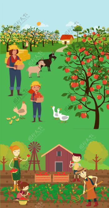 农场采摘图片