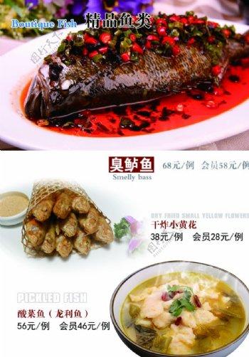 鱼类菜简约小清新菜谱菜单单页图片