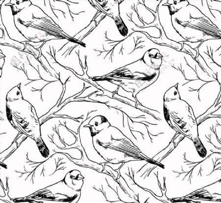 手绘鸟无缝背景图片