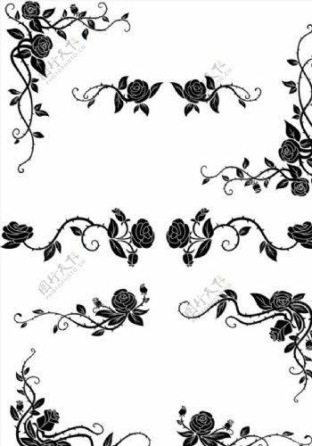 花卉藤蔓边角图片