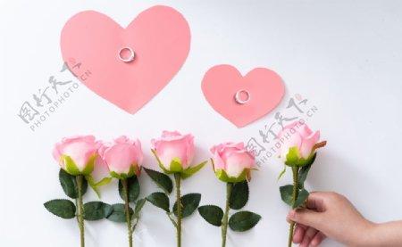 浪漫唯美粉色玫瑰拍摄素材图片