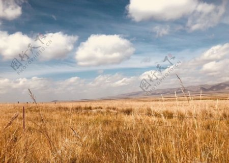 江河源草原图片