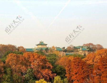 武汉大学樱顶老图书馆秋景图片