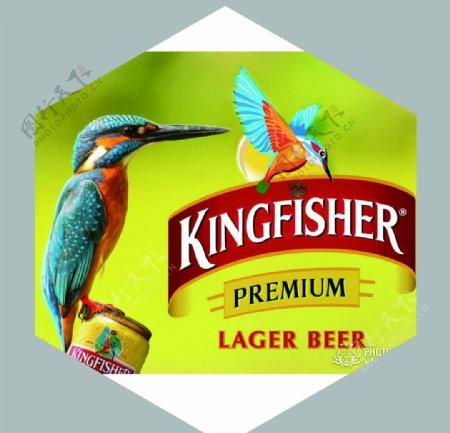 印度翠鸟啤酒图片