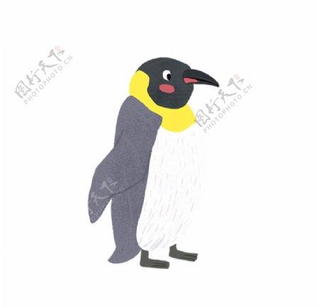 手绘企鹅图片