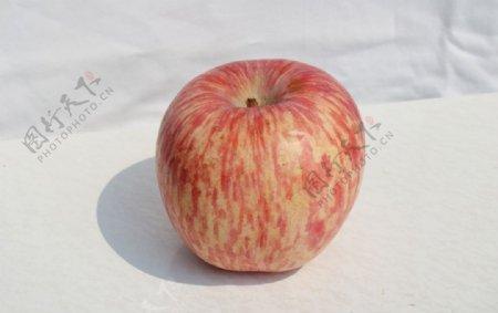 静物拍摄水果苹果白底图片