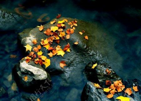 河流岩石落叶风景油画图片
