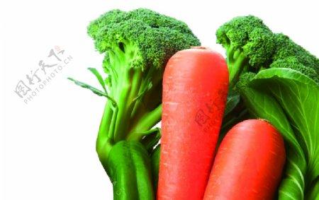 胡萝卜蔬菜花椰菜青椒免抠素材图片