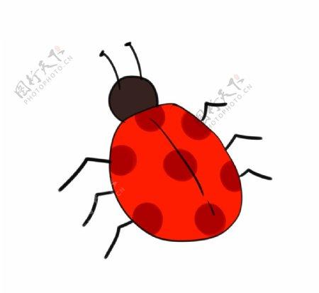 手绘瓢虫图片