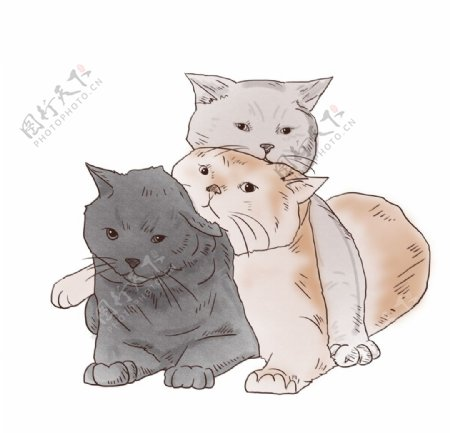 卡通手绘可爱猫叠叠乐图片