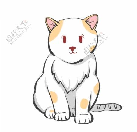 卡通可爱的小猫图片