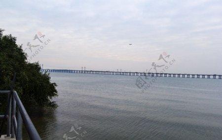 大海大桥图片