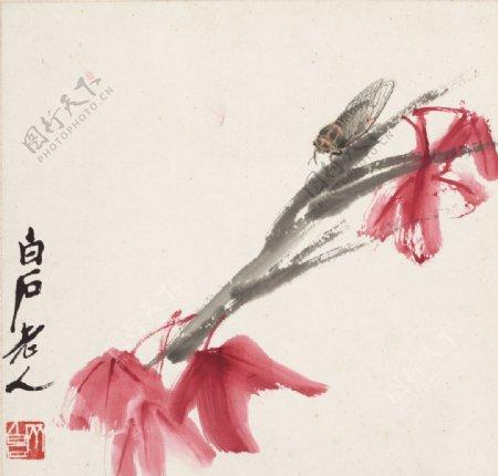 齐白石国画红叶鸣蝉图图片