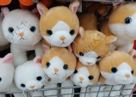 猫咪娃娃图片